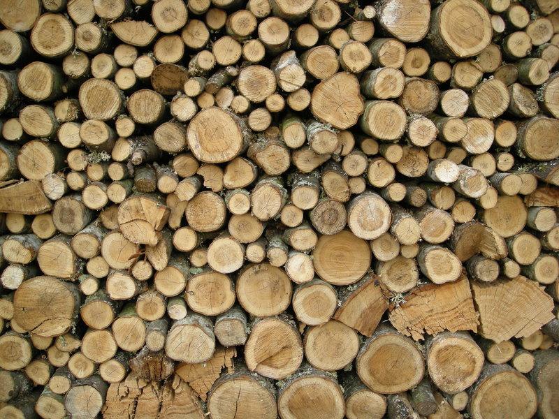 Diferença madeira telhado e construção