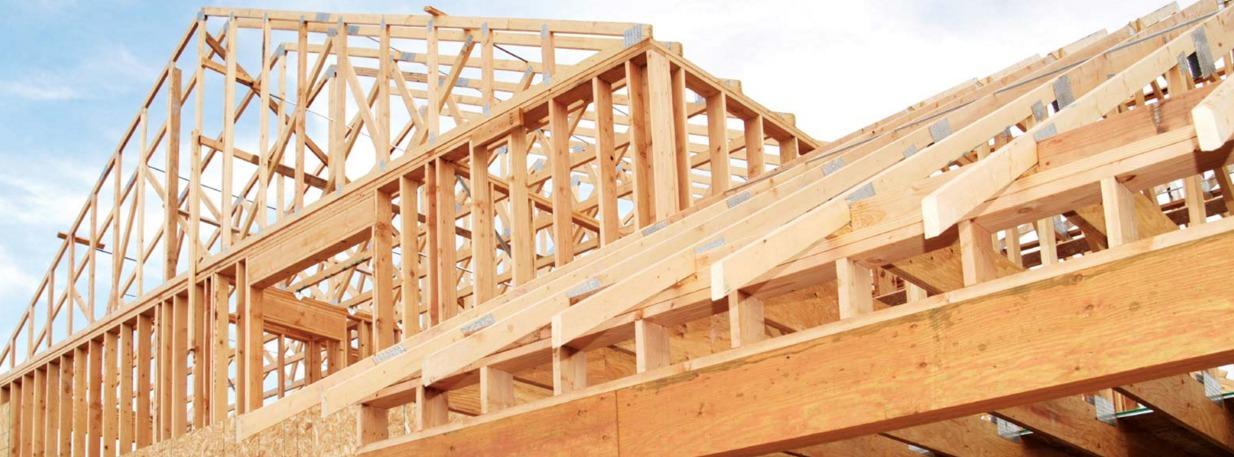 Principais tipos de madeiras para telhado